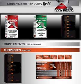 Thermogen Electric website