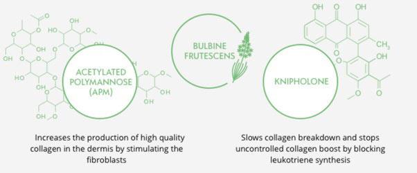 XYZ Smart Collagen Benefits
